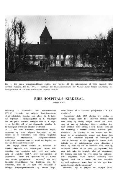Ribe Hospitals Kirkesal